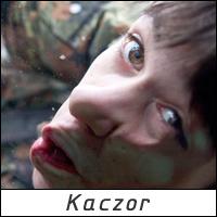 Kaczor - 77 Mazowiecka Drużyna Harcerska