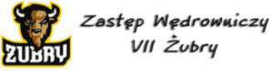 Zastęp VII Żubry